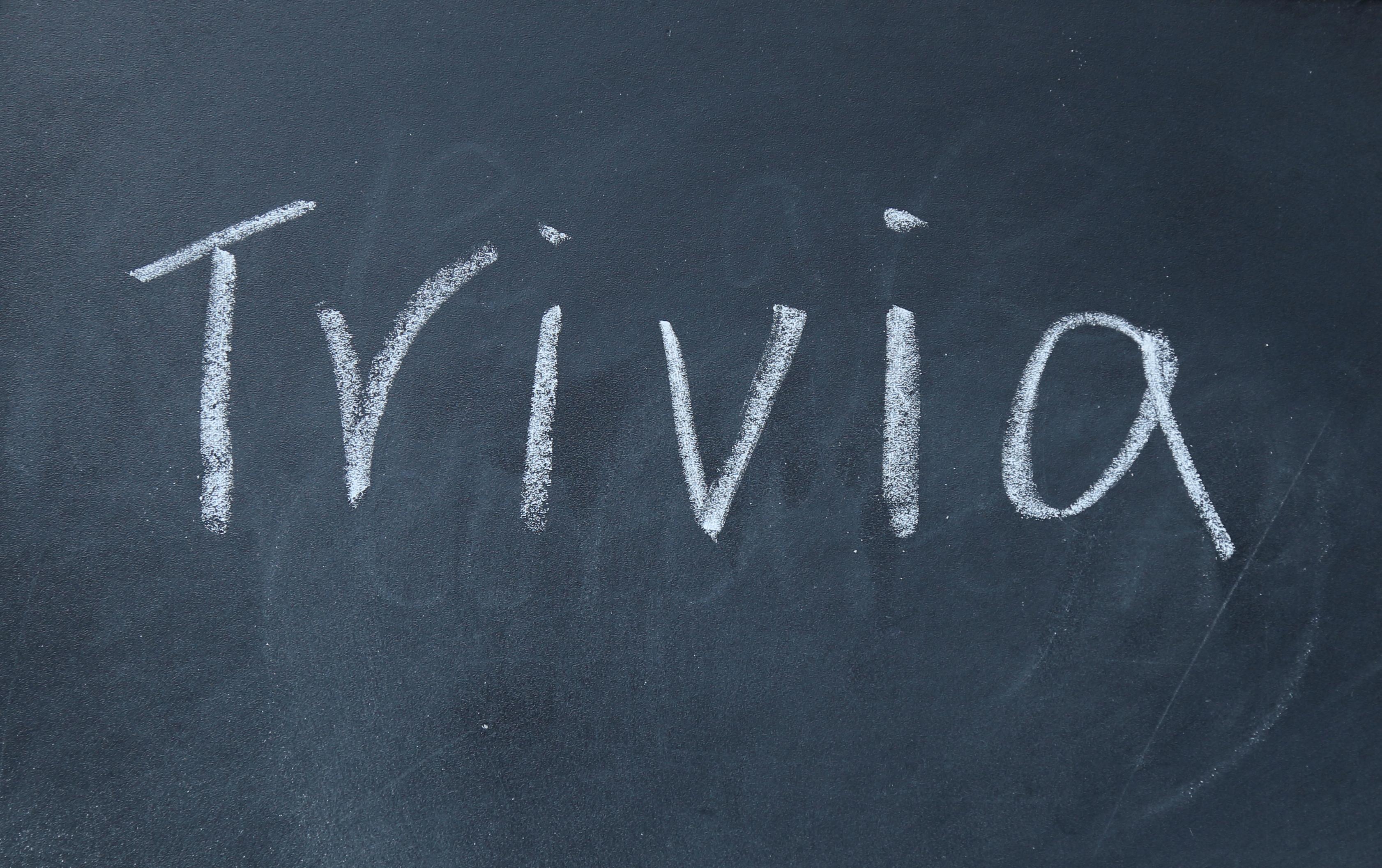 trivia word write on blackboard