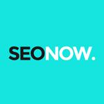 seo now ebook